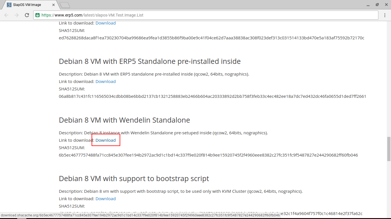 Downloading the Wendelin VM